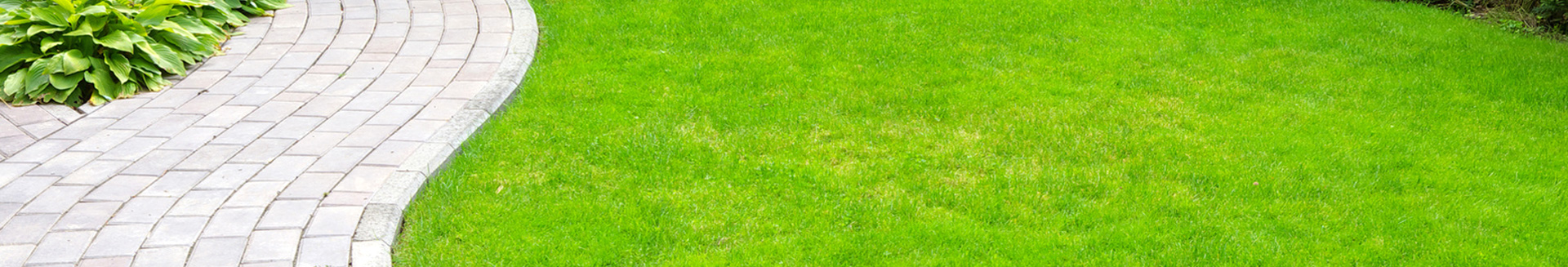 Lawn Care London Ontario